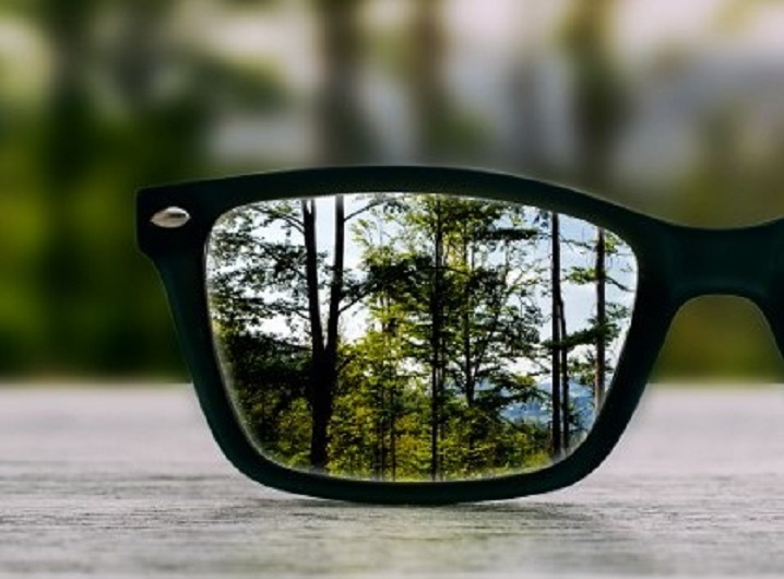 trees seen through spectacle lens